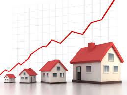 Real Estate Business Plan 1